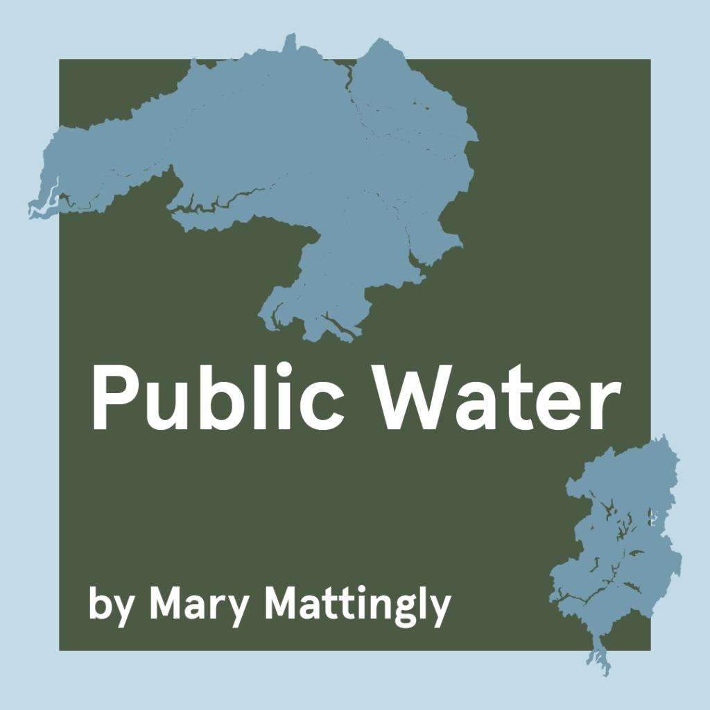 Mary Mattingly