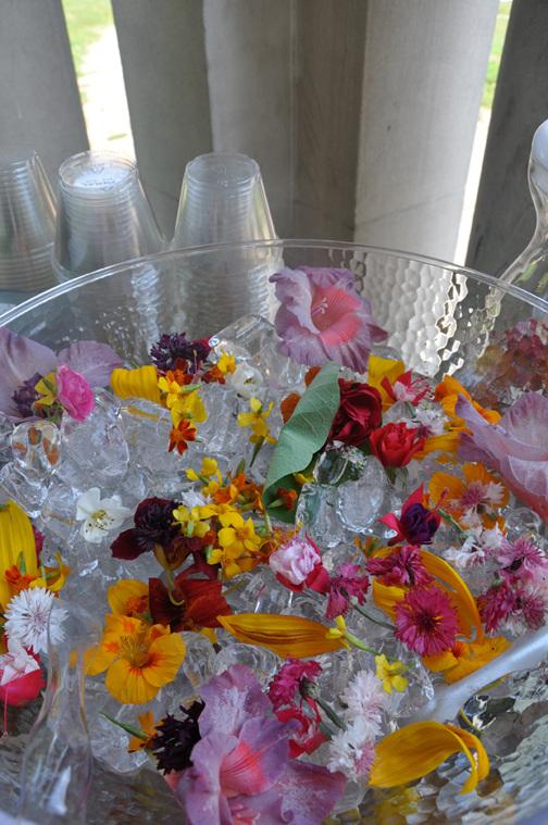 FlowerGarnishesonIce_ThePerennial_web_504